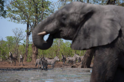 Okavango hidden gems attractions 6