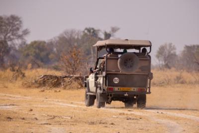 Okavango Hidden Gems - Okavango Delta - Botswana - Game Drive