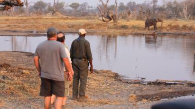Okavango Hidden Gems - Okavango Delta - Botswana - Luxury Tented Safari Camp - Game Viewing - Walking Safari