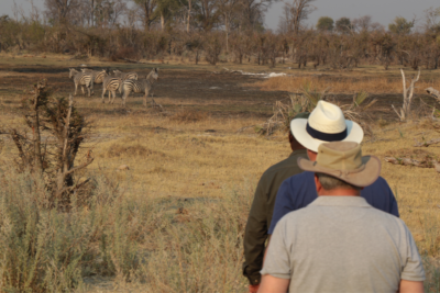 Okavango Hidden Gems - Okavango Delta - Botswana - Walking Safari