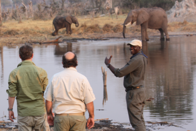 Okavango Hidden Gems - Okavango Delta - Botswana - Walking Safari - Big Five - Elephant